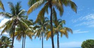 Почивка в Хавана и Варадеро Favorite 5*