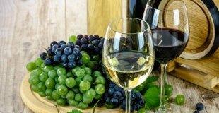 Екскурзия в СЕВЕРНА МАКЕДОНИЯ - По пътя на виното