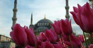 Фестивал на лалетата - Истанбул, 3 нощувки от Варна и Бургас