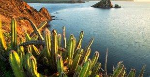 Мексико с почивка на Плая дел Кармен