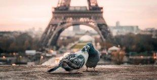 Париж - градът на светлината! Специална оферта за туристи под 25 г.!