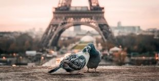 Париж - градът на светлината! Специална оферта  за туристи над 65 г.!