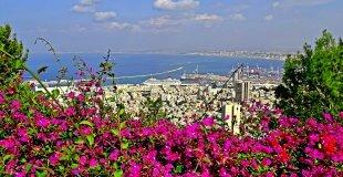 Първа пролет в Израел - екскурзовод и водач на български! Специална оферта за туристи над 65 г.!