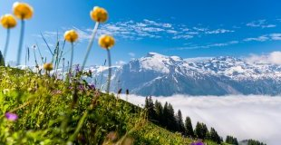Швейцария отблизо