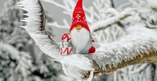 Коледа в Разлог - 3 нощувки в СПА хотел Катарино****