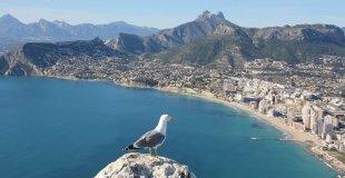 Одмор во ШПАНИЈА - Коста Бланка, Бенидорм - Специјална програма за сите возрасти!